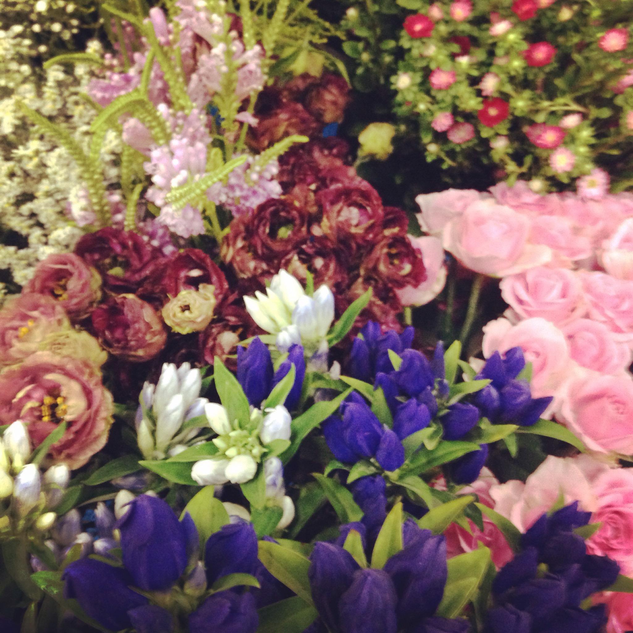 お花で広がる世界♫