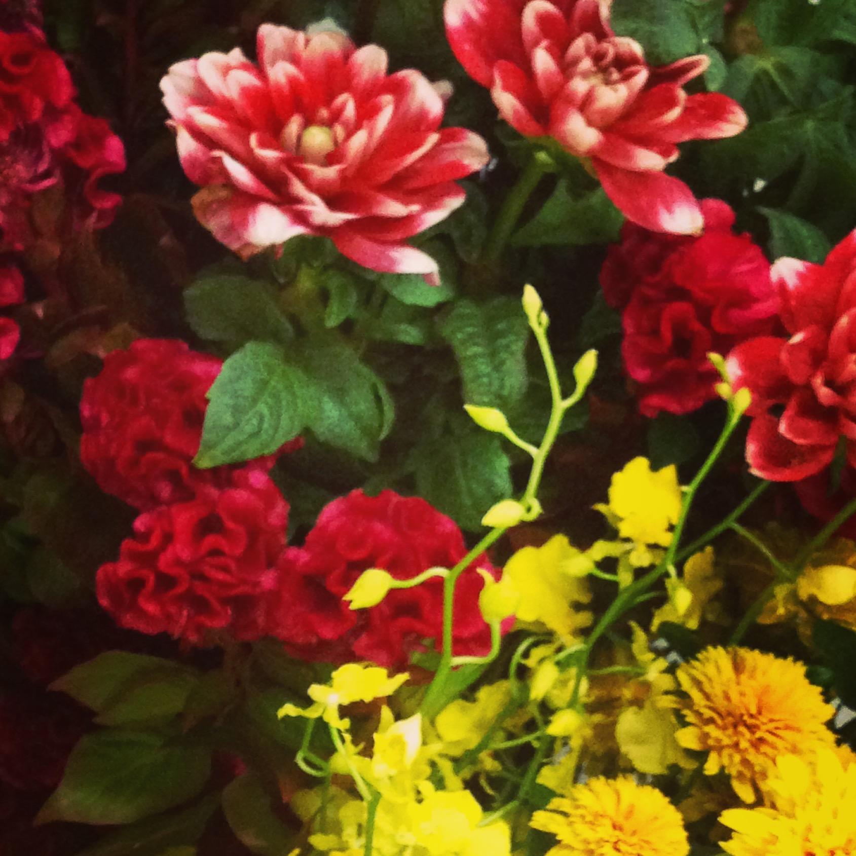 季節を感じさせるお花